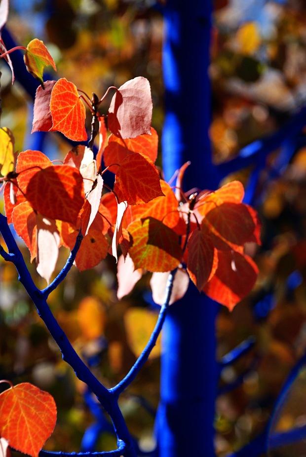 Breckenridge blue tree copy