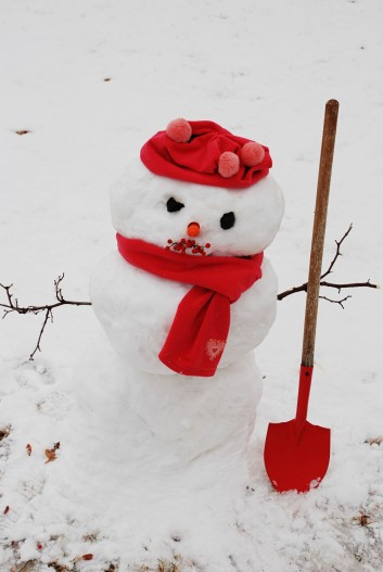 snowmnsvl